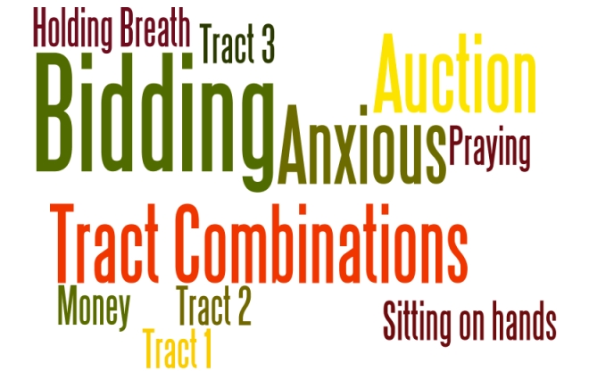 Auction wordle