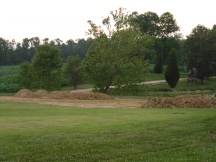 View with trees removed