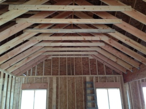 Family Room vaulted ceiling