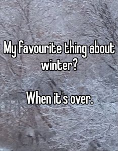 funny-picture-winter-favorite-thing-season